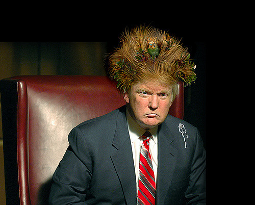 Donald Trump; hair radicalising itself. Pic Mark Rain