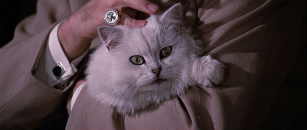 blofeld-cat-you-only-live-twice