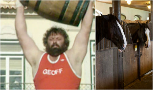 geoff capes stable